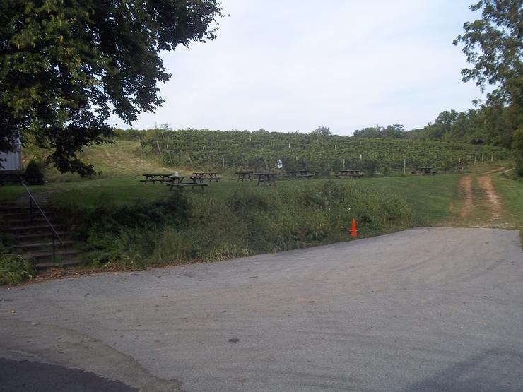 Виноградники Пенсильвании
