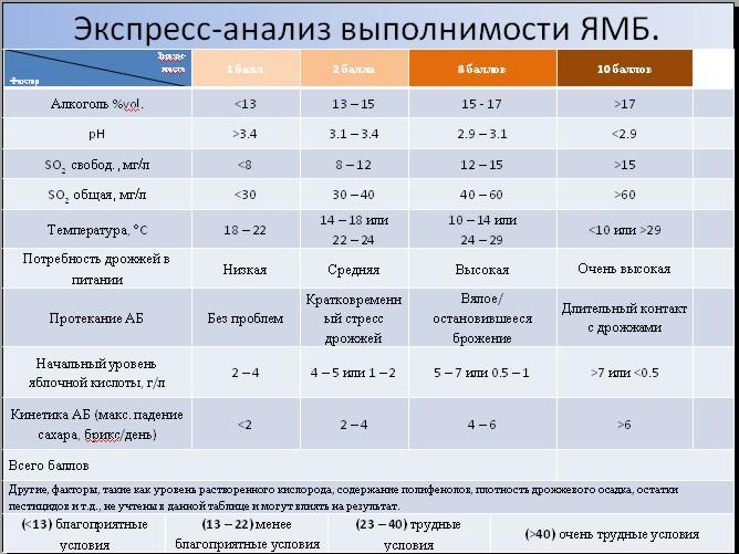 Анализ выполнимости ЯМБ