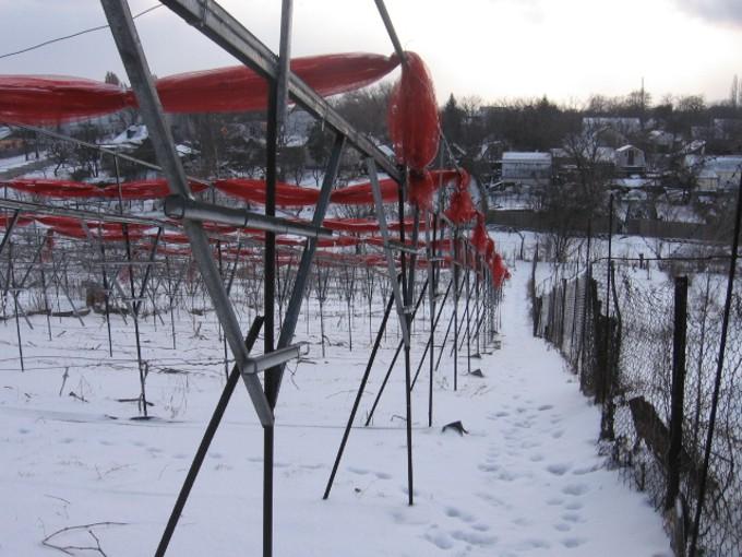 Зима весной 2