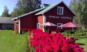 Финская винодельня