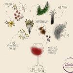 Аромат зрелого вина